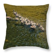 Family Of Geese On The Rogue River Throw Pillow