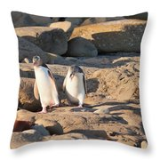 Family Of Nz Yellow-eyed Penguin Or Hoiho On Shore Throw Pillow