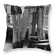 Family Of Pilings Throw Pillow