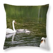 Family Of Swans Throw Pillow