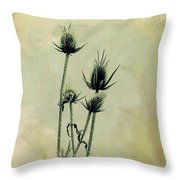 Family Of Teasels Throw Pillow