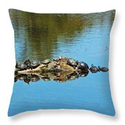 Family Of Turtles Throw Pillow