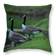 Family Time Throw Pillow