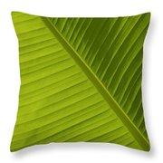 Fan Of Green 2 Throw Pillow