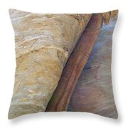 Fan Palm Forced Into A Slant By Rock In Andreas Canyon-ca Throw Pillow