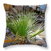 Fan Palm Leaf Over Andreas Creek In Indian Canyons-ca Throw Pillow