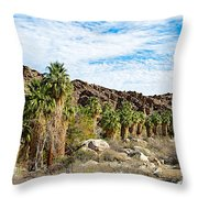 Fan Palms Line The Creek In Andreas Canyon In Indian Canyons-ca Throw Pillow