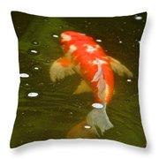 Fancy Fins Throw Pillow
