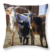 Fancy Goats Throw Pillow