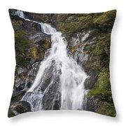 Fantail Waterfalls Throw Pillow