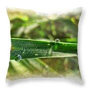 Fantastic Dew Throw Pillow