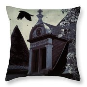 Fantasy Flight Throw Pillow