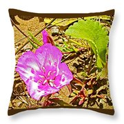 Farewell To Spring At Point Reyes National Seashore-california Throw Pillow