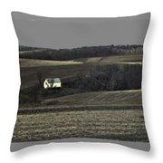 Farm 1 Throw Pillow
