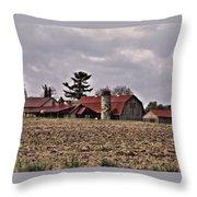Farm 2 Throw Pillow