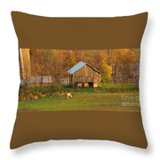 Farm At Sunrise Throw Pillow