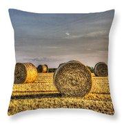 Farm Bales Throw Pillow