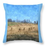 Farm Days 2 Throw Pillow