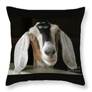 Farm Favorite Throw Pillow