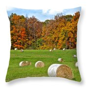 Farm Fresh Hay Throw Pillow