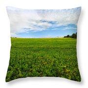 Farm Land  Throw Pillow