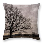Farm Land Near Matson Mo Dsc00412 Throw Pillow