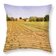 Farm Landscape Throw Pillow