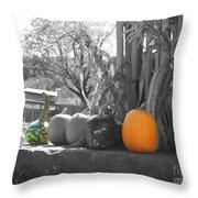 Farm Stand In Autumn Throw Pillow