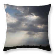 Farm Sunbeams Throw Pillow