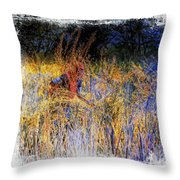 Farmers Fields Harvest India Rajasthan 6 Throw Pillow