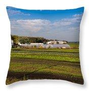 Farmer's Market And Green Fields Throw Pillow