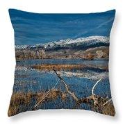 Farmers Pond Throw Pillow
