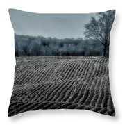 Farmfield Furrows Throw Pillow