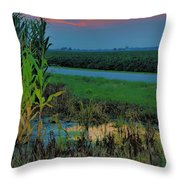 Farm Sunset Throw Pillow