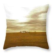 Farmhouse Island Throw Pillow