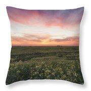 Farmland Sunset 2 Throw Pillow