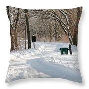 Farnsworth Park Path Throw Pillow
