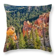 Farview Point Overlook Throw Pillow