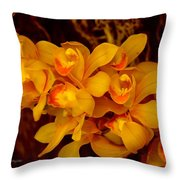 Fascinating Beauty Throw Pillow