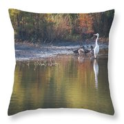 Fast Feathered Friends Throw Pillow