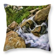Fast Moveing Stream Throw Pillow