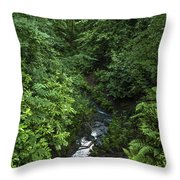 Fast River Throw Pillow