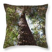 Father Pine Throw Pillow