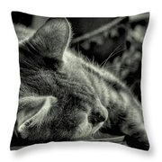 Fatigued Feline Throw Pillow