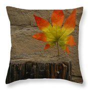 Faux Leaf Throw Pillow