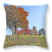Favoring The Fall Colors Throw Pillow