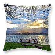 Favorite Bench And Lake View Throw Pillow