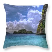 Favorite Color Blue Throw Pillow