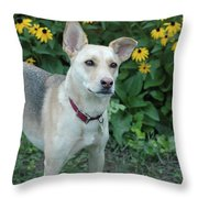 Fawn And The Flowers Throw Pillow
