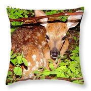 Fawn In The Forest - Inspirational - Religious Throw Pillow